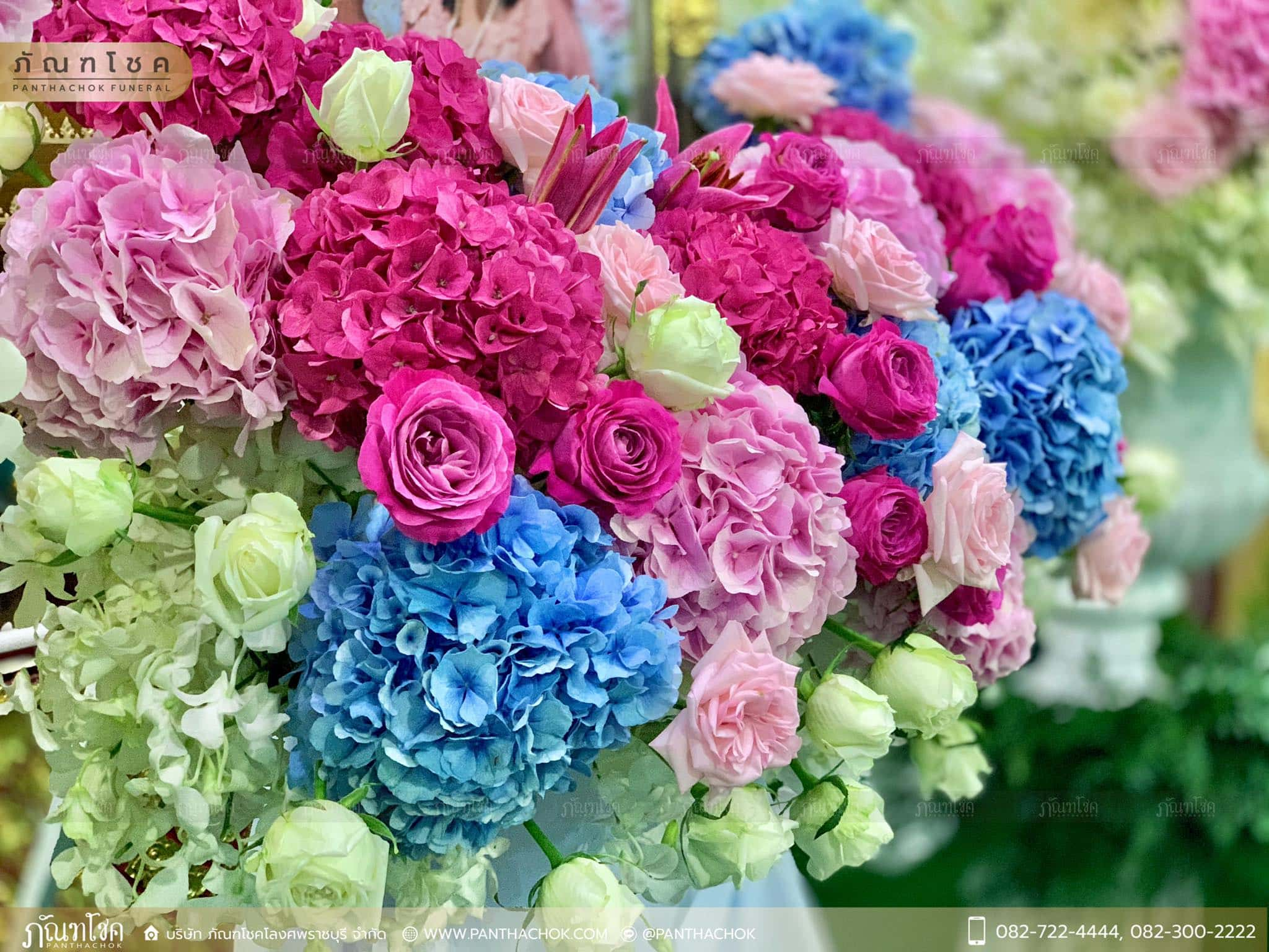 ดอกไม้หน้าหีบสีหวานสดใส ณ วัดหลักสี่ กทม. 3