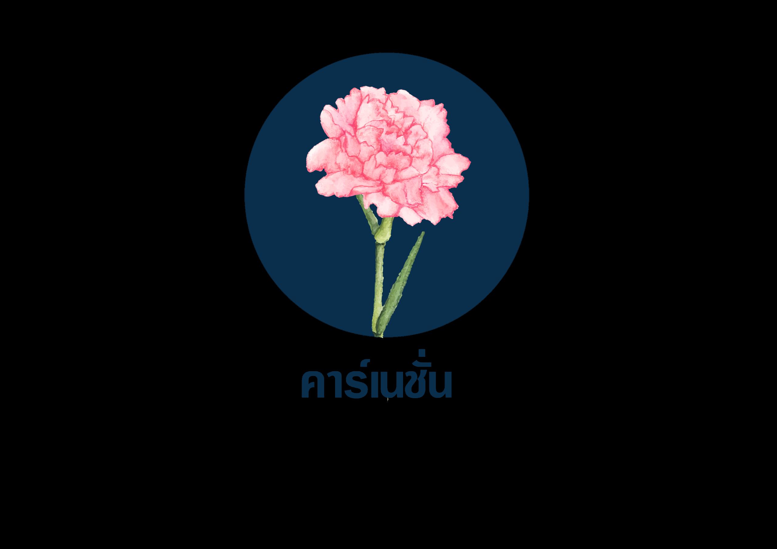 ดอกไม้ที่ใช้สำหรับจัดงานศพ 5