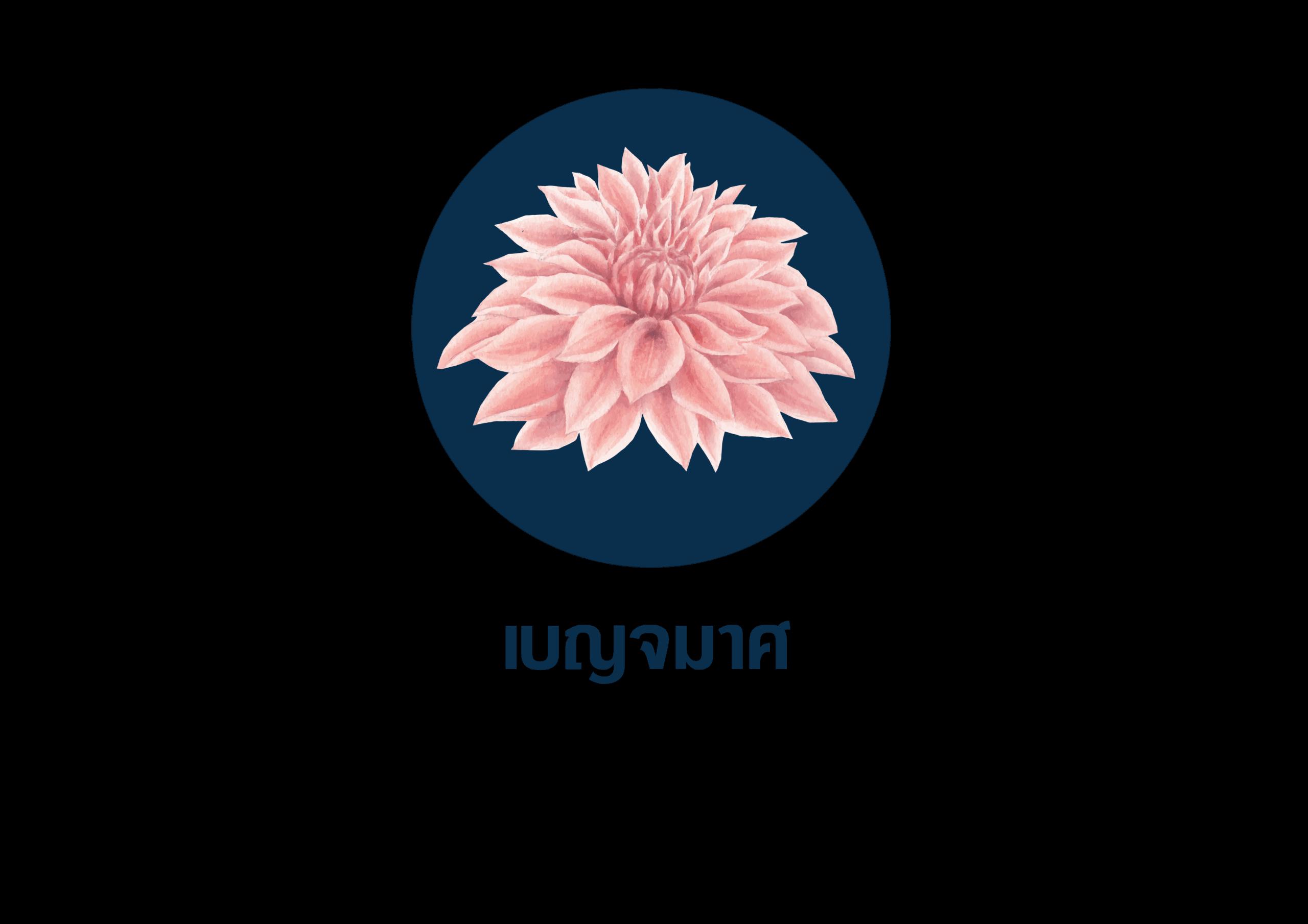 ดอกไม้ที่ใช้สำหรับจัดงานศพ 7