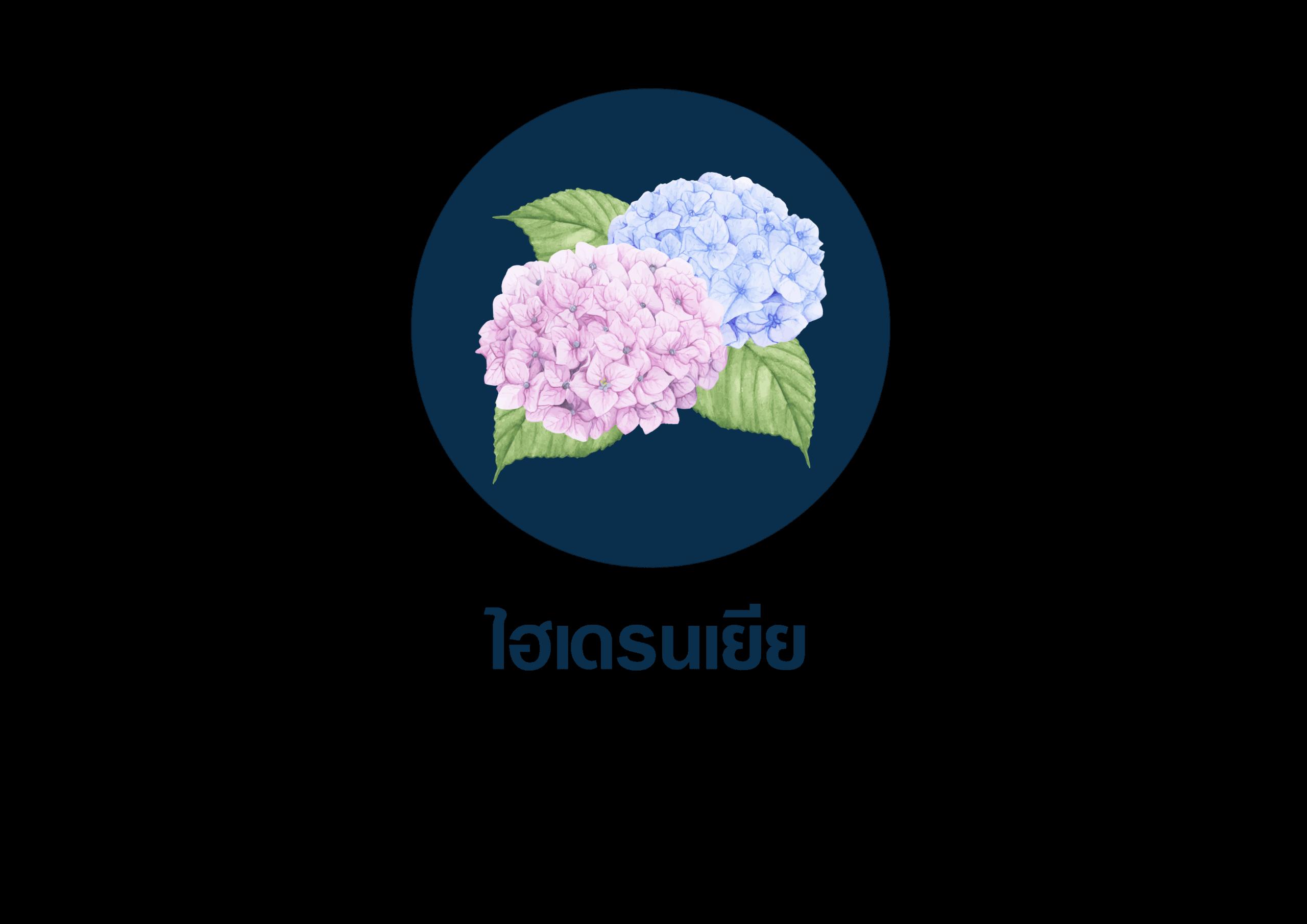 ดอกไม้ที่ใช้สำหรับจัดงานศพ 3