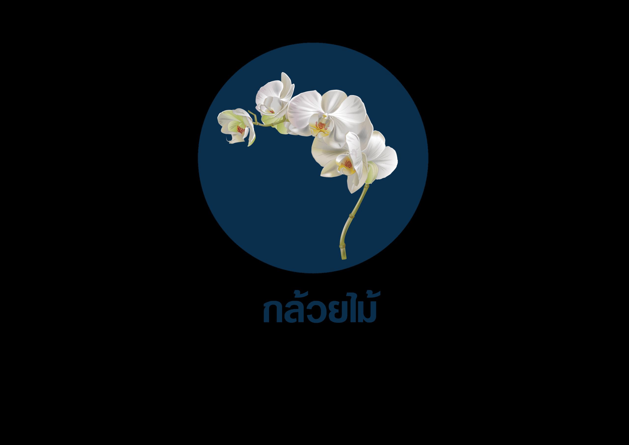 ดอกไม้ที่ใช้สำหรับจัดงานศพ 4