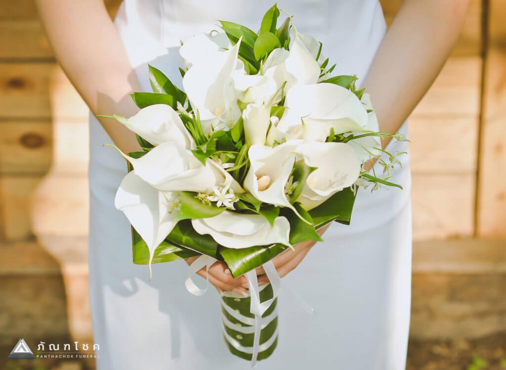 คาลล่า ลิลลี่ ดอกไม้แห่งความตายหรือตัวแทนของความบริสุทธิ์ 3