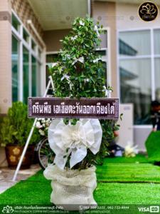wreath ratchaburi Watermarked4(2562-03-18-2049)